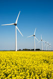 Wind turbine in a yellow flower field Royalty Free Stock Photography