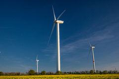 Wind turbine in a yellow flower field of rapeseed Stock Photos