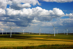Wind turbines. Beautiful green meadow with Wind turbines generating electricity in Inner Mongolia of china Royalty Free Stock Photography