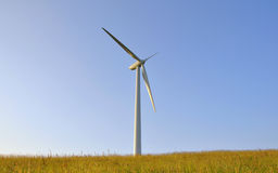 Wind turbines. Under the summer blue sky Royalty Free Stock Photo