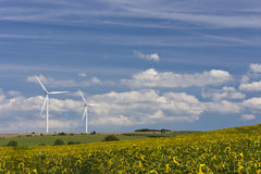 Wind turbines. Wind energy generating turbines standing in the field with sunflowers Stock Photos