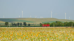 Wind turbines. Rural landscape of wind turbines and colorful meadow Stock Images