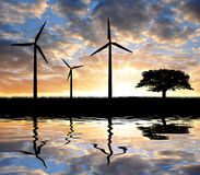 Wind turbines. With tree in the sunset Royalty Free Stock Images
