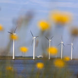 Wind turbines against blue sky off the coast of flevoland in the Stock Photos