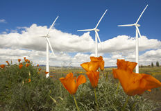 Wind Turbines Against Clouds, California Poppies Royalty Free Stock Images