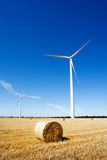 Wind Turbines and Agriculture Royalty Free Stock Photo
