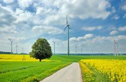 Wind Turbines Among Rapeseed Field And Meadows Stock Photo