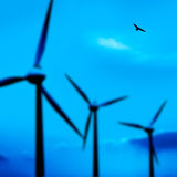 Wind turbines and bird Stock Photos