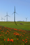 Wind Turbines and California Poppies Royalty Free Stock Photo