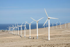 Wind Turbines on Canary Island Fuerteventura Royalty Free Stock Photography