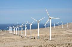 Wind Turbines on Canary Island Fuerteventura royalty free stock photography