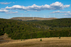 Wind turbines and cattle in the mountains. Royalty Free Stock Photography