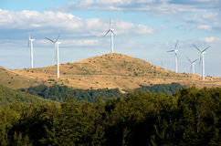 Wind turbines and cattle in the mountains. Stock Photography