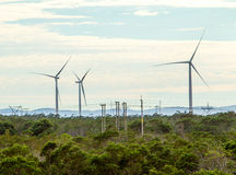 Wind turbines with clouds in the background and trees in the foreground. Royalty Free Stock Images