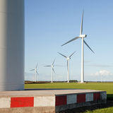 Wind turbines in corn field Royalty Free Stock Images