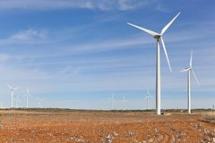 Wind turbines and cotton field. Stock Images