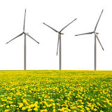 Wind turbines with dandelion field Stock Photos