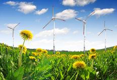 Wind turbines on dandelion fields Royalty Free Stock Image