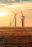 Wind Turbines at Dawn. A group of wind turbines in the early morning light Royalty Free Stock Photos