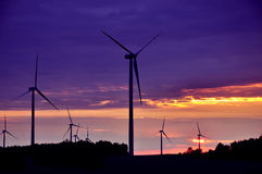 Wind Turbines During Beautiful Sunset