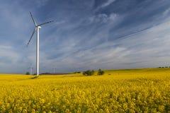 Wind turbines, Eco power Royalty Free Stock Photography