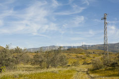Wind Turbines and Electric Pole. A rural lanscape showing wind turbines on the background and an electric pole on the foreground royalty free stock photography