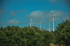Wind turbines for electric power generation and green treetops. Wind turbines for electric power generation over hilly landscape and green treetops, in a sunny stock image