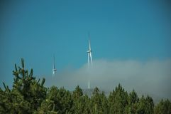 Wind turbines for electric power generation and trees. Wind turbines for electric power generation partially covered by mist above treetops, in a sunny day at royalty free stock images