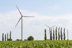 Wind turbines for electricity production royalty free stock images