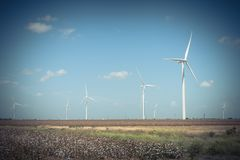 Wind turbines farm on cotton field at Corpus Christi, Texas, USA Royalty Free Stock Images
