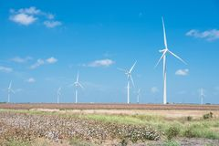 Wind turbines farm on cotton field at Corpus Christi, Texas, USA Stock Photos