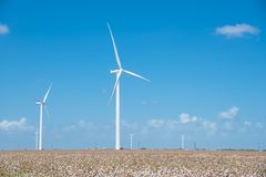 Wind turbines farm on cotton field at Corpus Christi, Texas, USA Stock Image