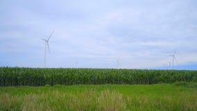 Wind turbines farm on green field. Landscape with wind turbines on meadow stock footage