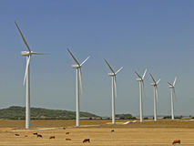 Wind turbines farm. Royalty Free Stock Photos