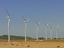 Wind turbines farm. Wind farm and landscape bulls loose turbines Royalty Free Stock Photos