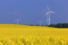 Wind turbines farm on the rape field. Stock Photography