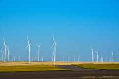 Wind turbines farm on a rural background Royalty Free Stock Image