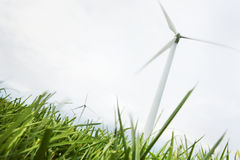 Wind Turbines in field Royalty Free Stock Image