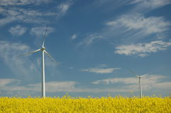 Wind turbines on field of oilseed rape Stock Photos