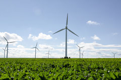 Wind turbines on a field Stock Images