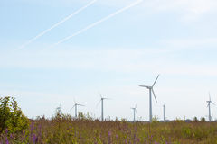 Wind turbines in a field. Wind turbines in a summer field Royalty Free Stock Images