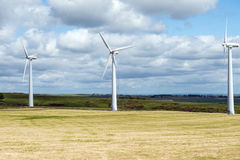 Wind turbines in a field Royalty Free Stock Photo