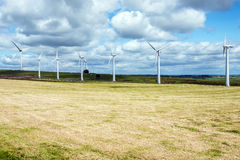 Wind turbines in a field Stock Photography