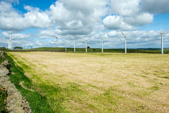 Wind turbines in a field Stock Photo