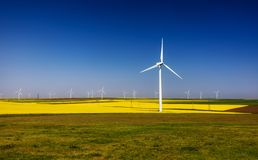 Wind turbines. Fields with windmills. Rapeseed field in bloom. Renewable energy. Protect the environment. Dobrogea, Romania. Wind turbines. Fields with windmills royalty free stock photos