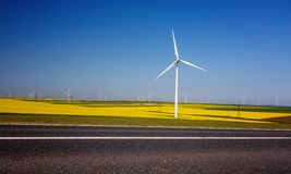 Wind turbines. Fields with windmills. Rapeseed. Field in bloom. Renewable energy. Protect the environment royalty free stock photos
