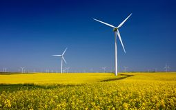 Wind turbines on fields with windmills in the Romanian region Dobrogea. Rapeseed field in bloom. Renewable energy. Protect the environment stock photography
