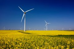 Wind turbines. Fields with windmills. Rapeseed field in bloom. Renewable energy. Protect the environment royalty free stock photography