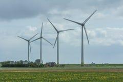 Wind turbines among the flower fields Stock Photo