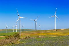 Wind Turbines in flowering fields in spring, South Africa royalty free stock photos